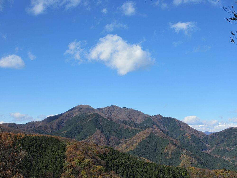 大羽根山から三頭山を望む