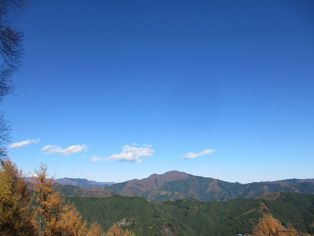 大羽根山の山頂